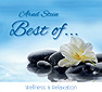 Best of Wellness & Relaxation (Audio-CD)